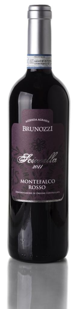 fronte-Montefalco-Rosso.png-e1468741925932-255×1024
