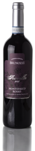 fronte-Montefalco-Rosso.png-e1468741925932-255x1024